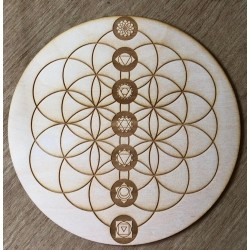 Flower of life & chakras